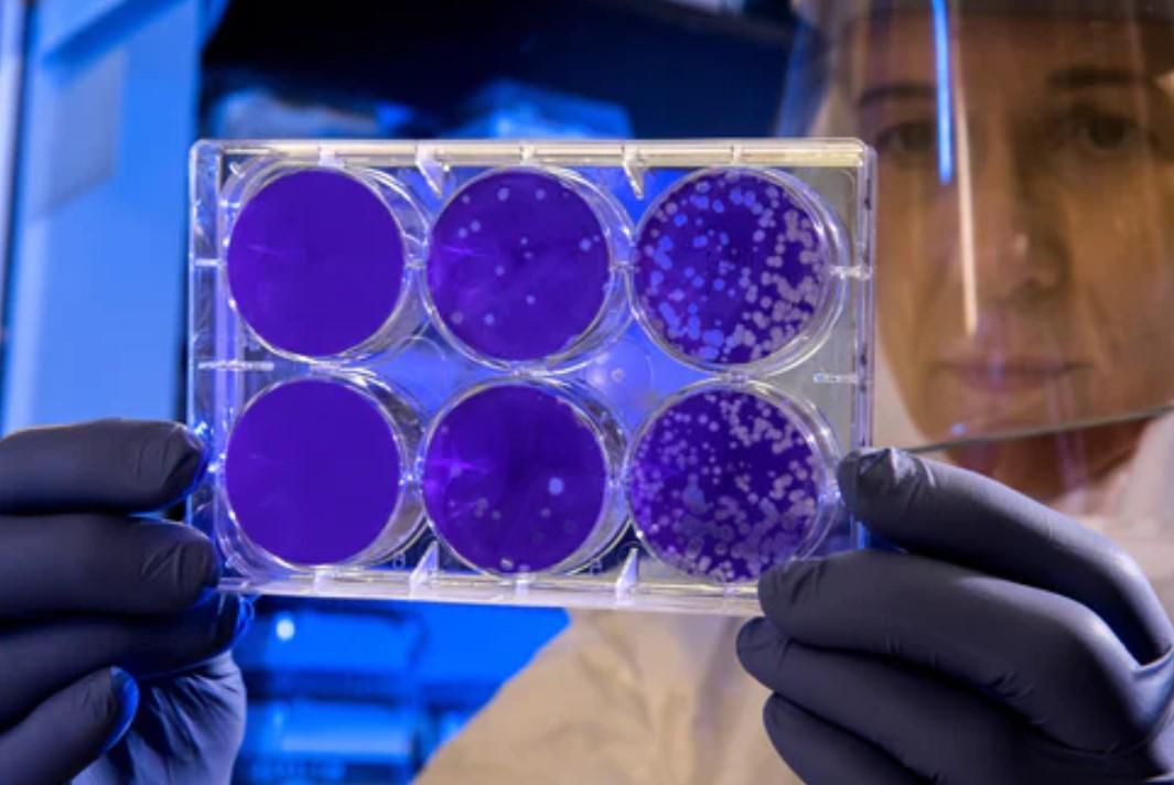 Coronavirus Outbreak: Latest News & Updates