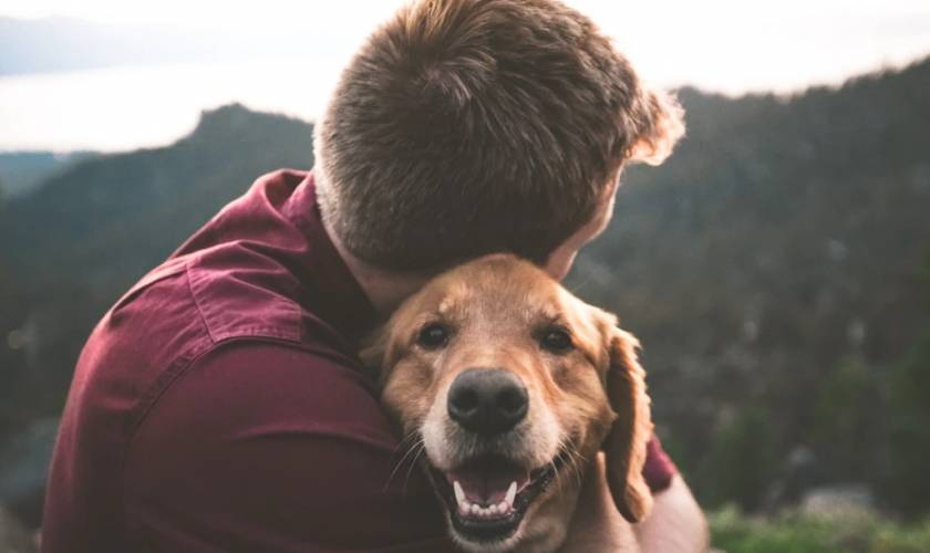 Can Your Pets Get or Give You Coronavirus?